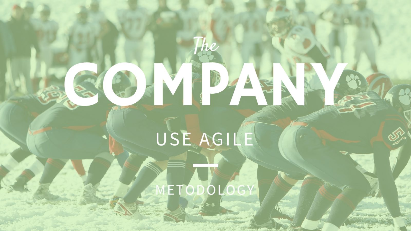 Top IT Companies that use agile methodology. How to find Best?